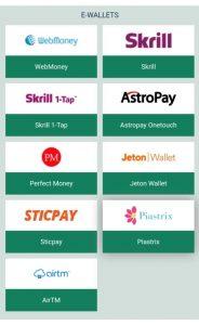 betwinner e-wallets